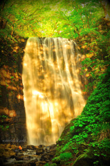 waterfall of gold...