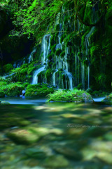 Beautiful spring water...