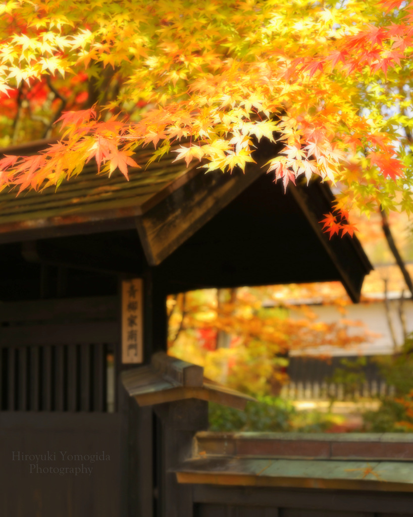 Autumn of samurai residence...
