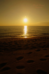 Footprints at sunset...