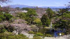Spring landscape...