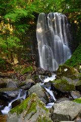 Nature stream...