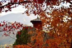 Autumn of Japan...