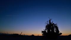 Twilight beautiful moment...
