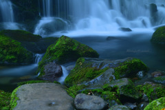 Waterfall's sounds...