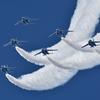 Blue Impulse Delta Roll