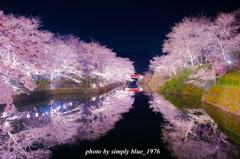 Reflection ~sakura week~