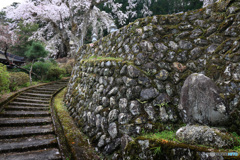 石垣のある境内