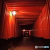 赤の回廊(千本鳥居)