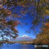 秋の湖畔 (305T)