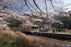 桜咲く駅 (350T)