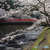 紅い橋 (436T)
