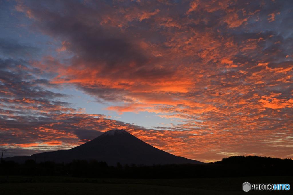 朝焼け富士 (395T)