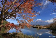 湖畔の秋 -T