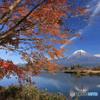 湖畔の秋  (232T)