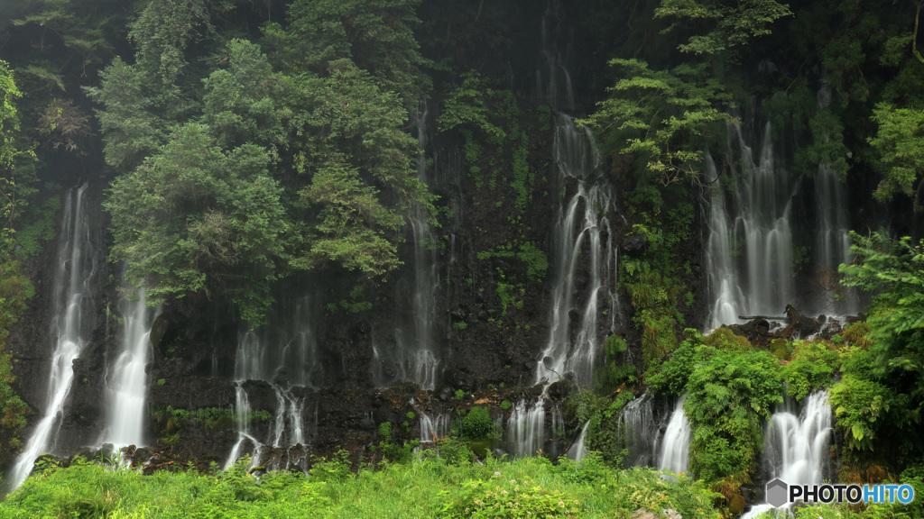 滝、タキ、瀧  (474T)