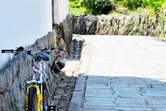 自転車のある風景3