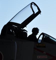 デモパイロット