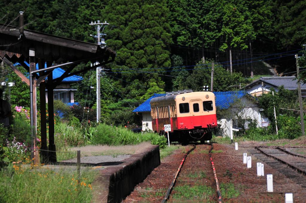 のどかな風景に走っていく小湊鉄道・・キハ200