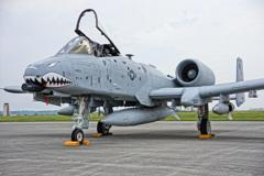 シャークマウスのA-10サンダーボルト・・・20120818