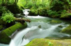 短い夏の奥入瀬渓流 阿修羅の流れ