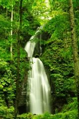 短い夏の奥入瀬渓流 白糸の滝