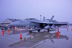 EA-18Gグラウラー。。。スコーピオンズ