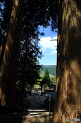 御神木の間から見た光景
