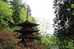 室生寺-五重塔