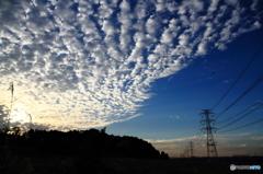 青空とひつじ雲と鉄塔と・・・