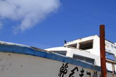 沖縄の鳥-イソヒヨドリ4