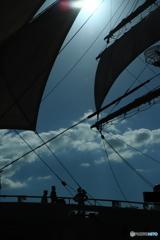帆を見上げる