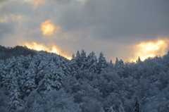 突然の大雪 3