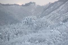 突然の大雪 1