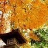 日枝神社 - 9