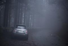 貸し切り林道