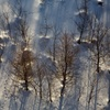 Snow field 3