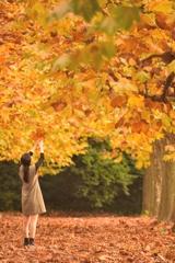届け、わたしの秋