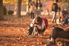 わたしの秋色写真