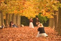 秋色ステージ