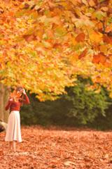 秋色に染まれ、わたし