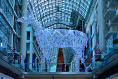 Merry Christmas from Toronto