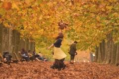 秋色に舞う