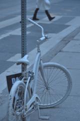 冬色自転車