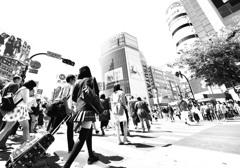 scramble crossing @ Shibuya