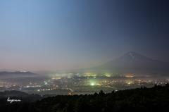 Moonlight(24mm)
