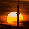 スカイツリーと朝陽 2014/8/5