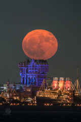 The moon rising to Tower of Terror