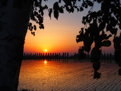 ZAWAの夕陽
