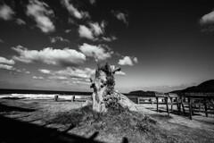 糸島 TIME